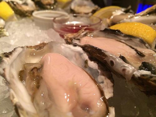 東京オイスターバー 恵比寿店にて大好きな牡蠣をもりっと食べてきたよ!!!